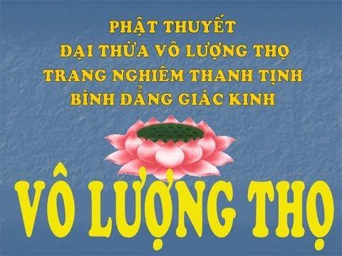 Kinh Vô Lượng Thọ, Bản việt dịch giọng Trung - Nam (hoàn chỉnh)