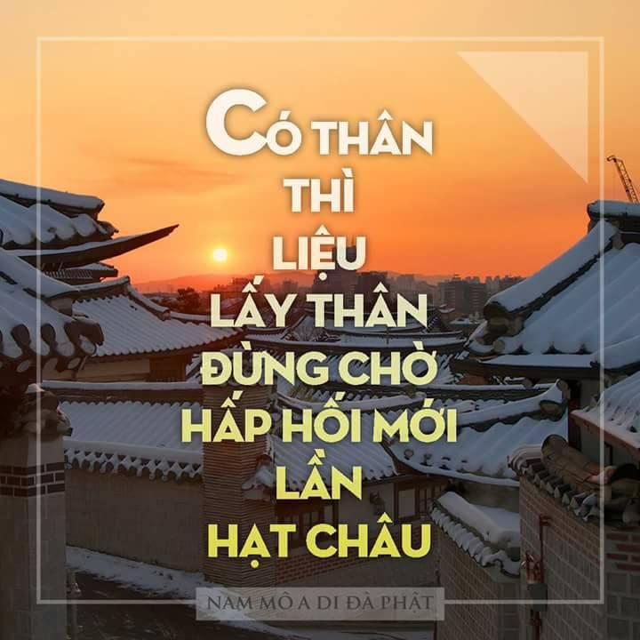 Hướng đân tụng kinh Địa Tạng và hồi hướng