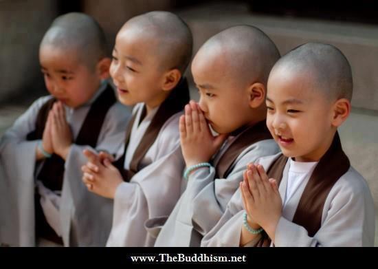 Vì Sao Càng Có Tâm Cung Kính Càng Có Lợi Trong Việc Học Phật?