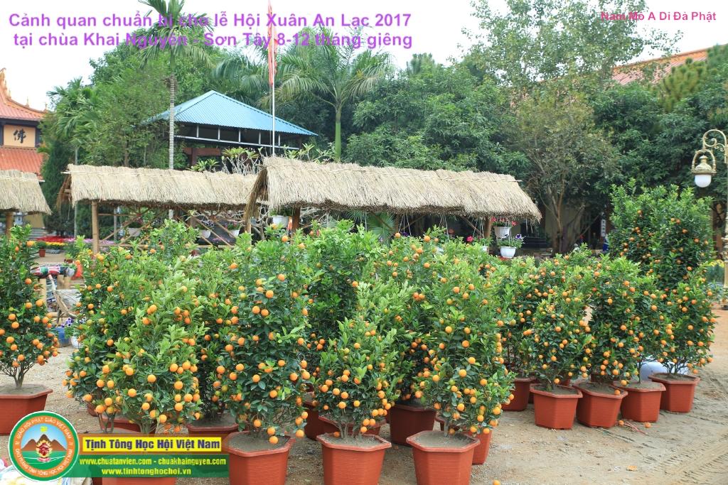 chuan bi cho le hoi xuan an lac tai chua khai nguyen 22 01 2017 chuakhainguyen com 35
