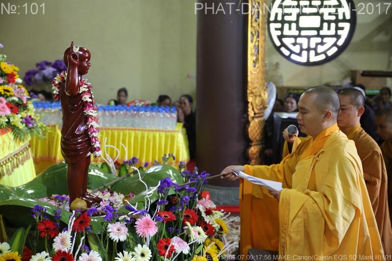 phat dan tan vien 2017(10)