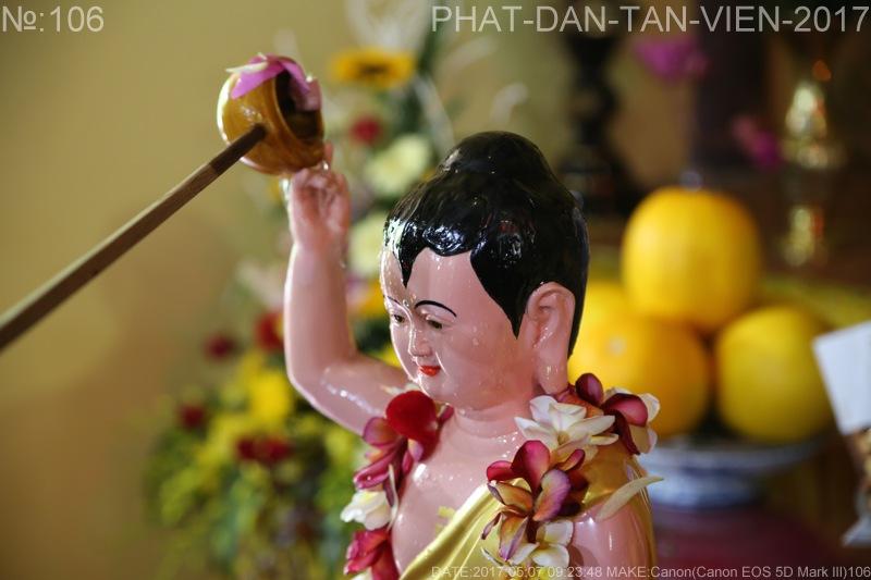 phat dan tan vien 2017(15)