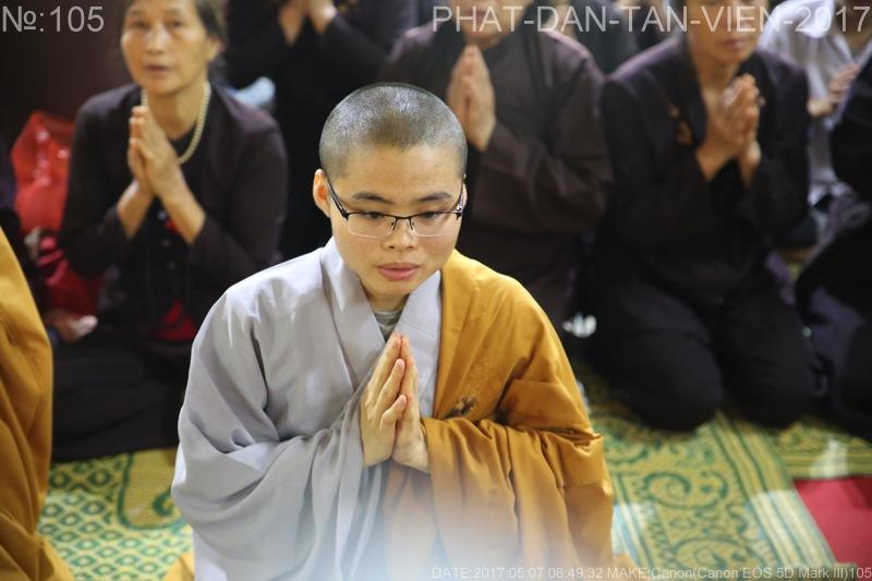 phat dan tan vien 2017(5)